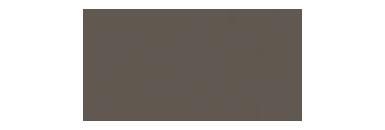Elephant Watch Portfolio, EWP, EWP logo, Elephant Watch Portfolio logo, logo