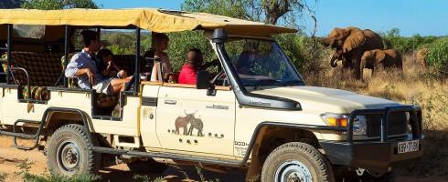 Elephant Watch Camp, Samburu National Reserve, wildlife, wild safaris, wildlife safaris, conservation, Elephant Watch Portfolio, Nairobi, Kenya, experience, activities