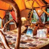 Elephant Watch Camp, rooms, tents, luxury tents, eco camp, eco friendly, eco design, environmentally friendly, conservation, sustainability, Elephant Watch Portfolio, Nairobi, Kenya, Samburu National Reserve, luxury tented camp, orange room