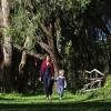Olerai, Olerai House, Naivasha, sanctuary, Lake Naivasha, Elephant Watch Portfolio, Nairobi, Kenya, Great Lakes, Great Rift Valley, activities, experience, wild safaris, wildlife, Big Five, wildlife safaris, nature walks
