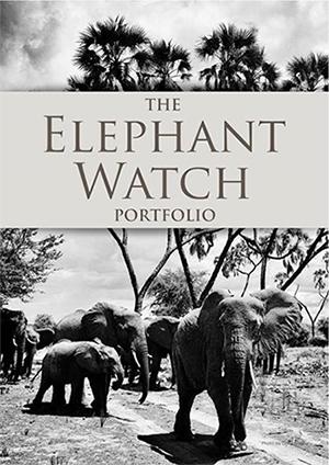 Elephant Watch Portfolio, Elephant Watch Camp, Olerai House, Boutique Safaris, wild safaris, wildlife safaris, conservation, Samburu National Reserve, Big Five, Africa, safaris, travel, Naivasha, Nairobi, Kenya, Maasai Mara