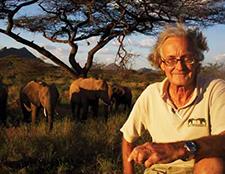 conservation, elephant watch portfolio, Nairobi, Kenya, wild safaris, wildlife safaris, Iain Douglas-Hamilton, Save the Elephants