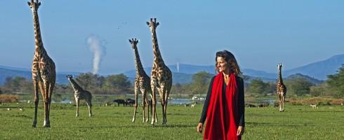 Olerai House, sanctuary, Naivasha, Lake Naivasha, Elephant Watch Portfolio, Nairobi, Kenya, outdoors, giraffes, nature walk, bush walk, walk, wildlife